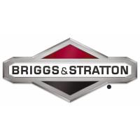Запчасти для двигателей Briggs Stratton